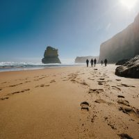 2 DAY GREAT OCEAN ROAD & PHILLIP ISLAND TOUR