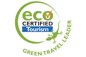 Eco travel leader